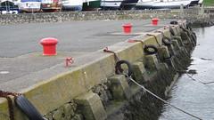 Groomsport harbour (divnic) Tags: uk ni northernireland countydown groomsport belfastlough ardspeninsula northdown northdownborough smallharbourvillage harbourvillage harbour seawall steps ladder stepladder sea water seaweed boatties capstan chain tyres