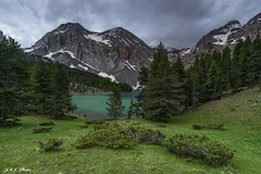 Piensa en verde (sostingut) Tags: llacspirineus d750 haida nikon tamron pirineos lago agua montaña ladera nieve nube cielo verde bosque árbol madera abeto primavera lluvia