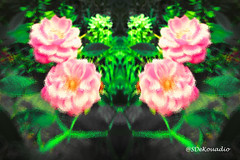 Pink Roses #abstract (Stephenie DeKouadio) Tags: abstractpainting abstractflower abstract abstractart abstractflowers art artistic hypnotique flowerspainting flowerpainting flowerabstract flowersabstract flowers flower
