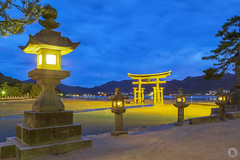 Itsukushima [JP] (ta92310) Tags: travel spring 2018 world japan japon hiroshima miyajima bluehour light longexposure asia asie itsukushima island ile