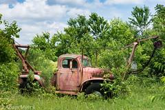 Vicinity of Millsboro, Delaware , Eastern Shore (adamkmyers) Tags: truck rust abandoned classictruck easternshore delaware delmarva