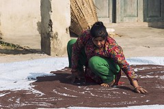 0763 Mustard Seeds Work (Hrvoje Simich - gaZZda) Tags: people woman work traditional food outdoors village nepal asia nikon nikond750 gazzda hrvojesimich