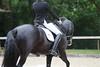 _MG_8013 (dreiwn) Tags: dressage dressur dressuur pferd reitturnier turnierreiten pferdesport horse horseback horseriding equestrian reitverein dressurprüfung kandare doublebridle reiten pferde reitplatz ridingarena