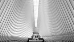 One World Observatory (Avaiyang) Tags: oneworld tradecenter nyc ny nycphotographer newyorkcity newyorker manhattan nyclife newyorkworld oneworldtradecenter dumbo newyorklife newyorkig nycityworld blacknwhite blackandwhite bnw oculus