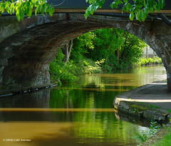3KB03990a_C (Kernowfile) Tags: leedsliverpoolcanal canal bridge water reflections bushes trees pentax