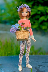 Maria (Semitsvetik❀) Tags: licca obitsu 24 maria doll flowers