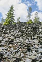 Kiesslich Halde 02 (zimmermann8821) Tags: deutschland sommer berge schiefer sehenswürdigkeiten baum naturlandschaft 07349lehesten lehestenthüringerwald halde schieferhalde staatsbruch kiesslich kieslich geoparkschieferland