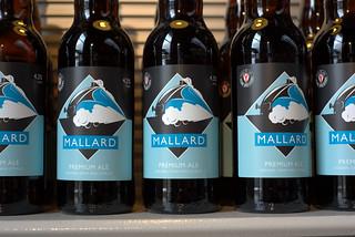 Mallard Ale at the National Railway Museum, York