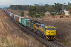 Daylight Duck (Henry's Railway Gallery) Tags: 1105 1100class rl303 rlclass emd diesel qubelogistics freighttrain containertrain 4565 aberdeen