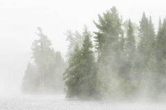 'A Change in the Weather' (Canadapt) Tags: mist fog morning trees island keefer canadapt