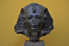 Head of Amenhotep II (j. kunst) Tags: danmark denmark 丹麦 københavn copenhagen 哥本哈根 nycarlsbergglyptotek museum sculpture statue head diorite granite king pharaoh pharaonic amenhotepii amenophisii aakheperure aaxprwra imnhtphqaiwnw nemes uraeus beard egypt egyptian newkingdom 18thdynasty