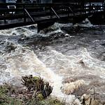 Hochwasser in der Schönmünz thumbnail