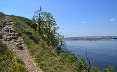 Climbing the Mogutova mount II (МирославСтаменов) Tags: russia zhiguli mogutova mountain slope climbing rocks krummholz volga river edge tree