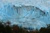 . (robbie ...) Tags: perito merino glaciar patagonia santa cruz argentina south america sudo americano ice iceberg cold frozen advancing people tourist nikon d70 2006
