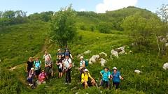 Slovenia June 2018 (Hedonistic Hiking) Tags: slovenia slowfood loveslovenia winetasting wine partisan river kobarid bled bohinj foodwinetours friuli hisa franko gorizia bjana primosic