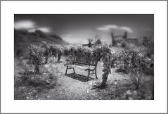 """Repos"", Nelson Ghost Town , NV (Vincent Galassi) Tags: repos nelson ghost town nv black white bench"