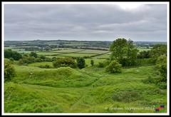 Redhill 09.06.18 (2) (nowboy8) Tags: nikon nikond7200 redhill snipedales lincolnshirewildlifetrust lincolnshire wildlife walk trees