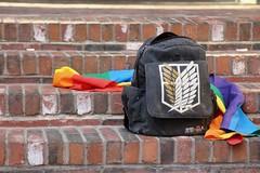 Pride Flag (Read2me) Tags: flag brick bag backpack rainbow colorful pree cye thechallengefactorywinner ge tcfunanimousjune steps stairs