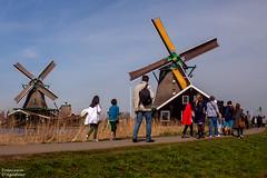 Zaanse Schans (Francesca D'Agostino) Tags: mulini mills zaanseschans amsterdam holland cieloblu bluesky colori colors