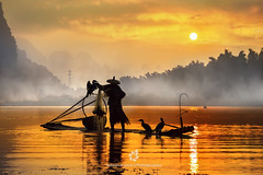 Silhouette of the Cormorant Fisherman III (fesign) Tags: bambooraft bird boat chinaeastasia chineseculture colourimage contrast cormorant fisherman fishing fulllength guilin horizontal karstformation mountain onemanonly oneperson oneseniorman orange outdoors people photography reflection river riverli rurallife senioradult silhouette standing sunlight sunrisedawn threeanimals traditionalclothing twilight water woodmaterial xingping yangshuo
