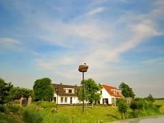 Holland (Mattijsje) Tags: holland netherlands nederland stork ooievaar nest nesting huis boerderij farm dutch landscape landschap clouds wolken lucht sky green summer spring