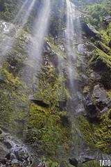 Interior de la Chorrera (Tato Avila) Tags: colombia colores cálido cascada cascadalachorrera cundinamarca naturaleza nikon piedras waterfalls colombiamundomágico agua