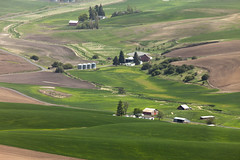 Steptoe Butte (Stephen P. Johnson) Tags: processed jpg washington eastern palouse steptoe butte farming