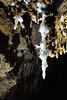 Stalactite avec excentriques d'aragonite (flallier) Tags: stalactite aragonite excentriques grotte cave speleo spéléologie caving spéléothème concrétions blanc white aude calcairesdolomitiques dolomie
