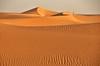 L'Empremta del vent. (josepponsibusquet.) Tags: campaments campamentos refugiats refugiados sahrauís saharauís tindouf tinduf algeria argelia dajkla dajla desert desierto arena sorra vent viento sanefes dibuixos empremta petjada dunes duna