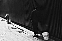 N0012953-1 (quadobtus) Tags: street candid provoke hysteric ricoh gr daido moriyama snap city 나무 동물