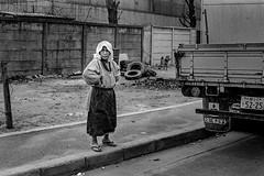 Street 638 (soyokazeojisan) Tags: japan osaka bw street city people blackandwhite road analog olympus m1 50mm trix film monochrome kodak memories 昭和 1970s 1975 dog