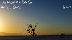 Days And Nights At The Salton Sea (slworking2) Tags: saltonsea lake desert california milkyway nighttime sunset timelapse