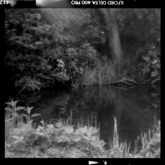 Roll01_-6_Pos_Small (tobyv_photo) Tags: agiflex agifold agipinfold pinhole pinholelens lensless camera conversion photography medium format bellows classic mono ilfordfilm ilford delta 400 home development 120 6x6 square river tree reeds reflection