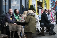 Friends, a dog, conversation and a drink. (andypf01) Tags: people adults men women dog conversation drinking relaxing smiling laughing streetphotography candid colour whitby northyorkshire seasidetown england unitedkingdom uk