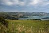 Looking Towards Akaora (Jocey K) Tags: bankspeninsula newzealand nikond750 sea akaroaharbour scene hills clouds sky fence grass padock