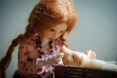 DSC_4639 (peregrina_tyss) Tags: pig movingdolls chucha happiness bjd obitsu haruka brynhild