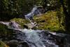 Agua y Verde (Municipio de Jardín, Antioquia, Colombia) (Andrés García Avila) Tags: agua cascadas jardin jardín antioquia canon eos80d colombia paisajes