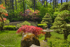 The Japanese Garden (jimgspokane) Tags: japanesegarden spokanewashingtonstate gardens today´sbest
