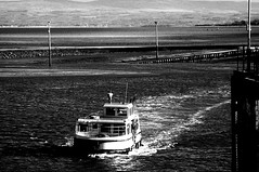 Ferry (Clive Varley) Tags: fleetwoodferry mono delabatory07 october2017
