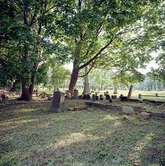Old Bergen Cemetery (devb.) Tags: 6x6 mediumformat hasselbladswcm ektar oldbergenchurch oldbergencemetery jerseycity nj
