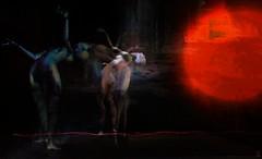 Walls/Artist : Theda Tammas (Bamboo Barnes - Artist.Com) Tags: thedatammas secondlife art installation exhibition thegalleries virtualart digitalart surreal dark shadow light contrast vivid blue black red wire circle body women figure bamboobarnes texture manipulation
