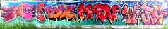 graffiti in Amsterdam (wojofoto) Tags: amsterdam nederland netherland holland graffiti streetart wojofoto wolfgangjosten amsterdamsebrug flevopark hof halloffame maow pose