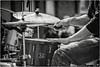 Cassel cornemuses (Des.Nam) Tags: nb noiretblanc nordpasdecalais nikon nord noirblanc bw blackwhite monochrome mono musiciens musique personnes people groupe desnam d800 cassel cornemuses witloof