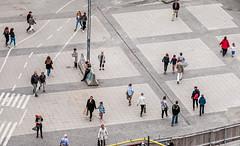 Stockholm, Sweden (PhredKH) Tags: 70200mm canoneos7dmkii canonphotography ef70200mmf28lisiiusm fredkh peopleonthestreet photosbyphredkh phredkh splendid stockholm streetphotography streetsofstockholm sweden urban people peoplewatching streetscene road