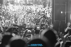 cityfest_sobota-31