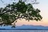 Sun set on Lake Ogawara. 2018-05-20 # 5 (KTK's) Tags: 三沢市 青森県 日本 jp