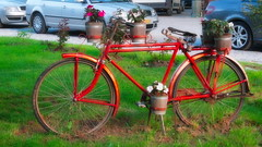 Has seen better days.... (Photo_hobbyist) Tags: bicycle red pale ride