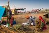 Kalbelya music camp Pushkar Mela. Rajasthan (Tito Dalmau) Tags: kalbelia camp nomad music camels fair mela pushkar rajasthan india