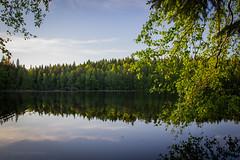 Halimasjärvi (Markus Heinonen Photography) Tags: halimasjärvi järvi lake atala tampere suomi finland luonto nature waterscape landscape metsä forest reflection europe