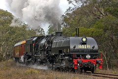 6S60 DC6029 Thirlmere 080618-2 (Tom Marschall) Tags: rail railroad railway travel heritage australia sydney nsw new south wales canon photography steam train loco locomotive engine cloud cloudy smoke